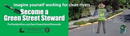 Green Street Stewards Program
