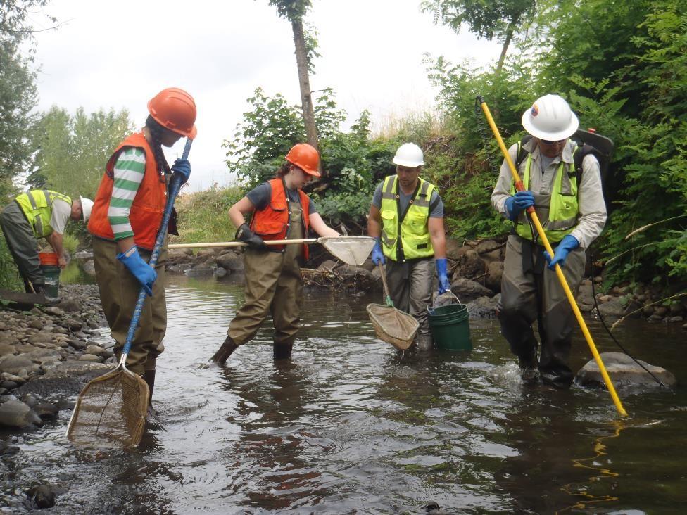 Johnson Creek Water Quality – Johnson Creek Watershed Council